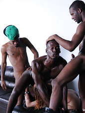With introductions out of the way our new quintet of cock-loving black beauties set out to stuff their faces with chocolate tool. The couch is crowded with hungry mouths as the orgy of oral begins. Itll have your tongue wagging as much as theirs.