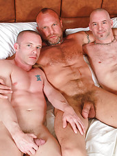 Chad Brock takes the lead with Ross X and Patrick OConnor and practically becomes their daddy. Their bareback daddy that is! Ross and Patrick practically devour Chad's cock, both sucking him off and treating his cock to the utmost pleasure before turnin